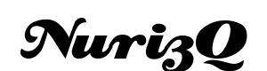 Logo NurizQ